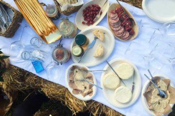 Formaggio e picnic